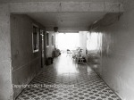 Hallway - Leon
