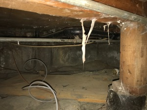 Crawlspace Has Spider Webs